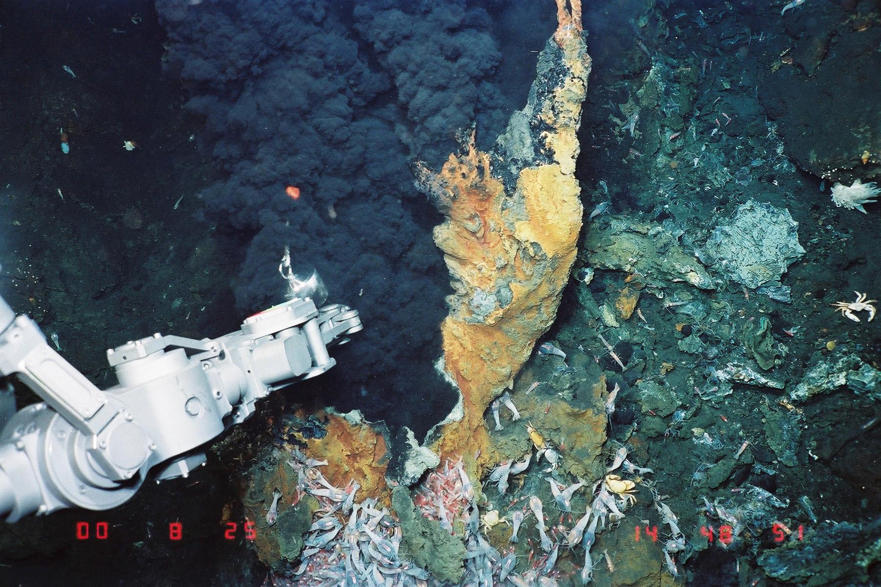 海底熱水鉱床