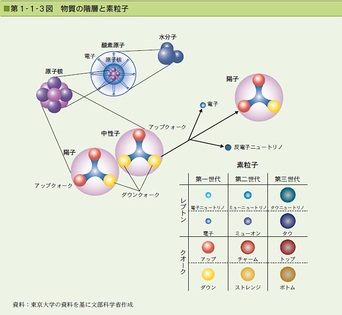 生命素粒子とは