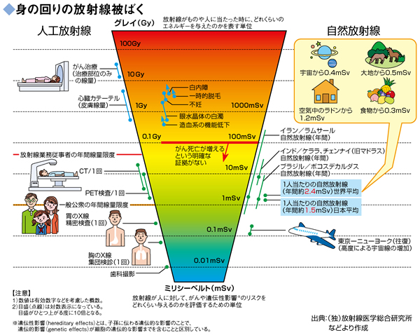確定的影響と確率的影響 - 放射線の人体への影響 …